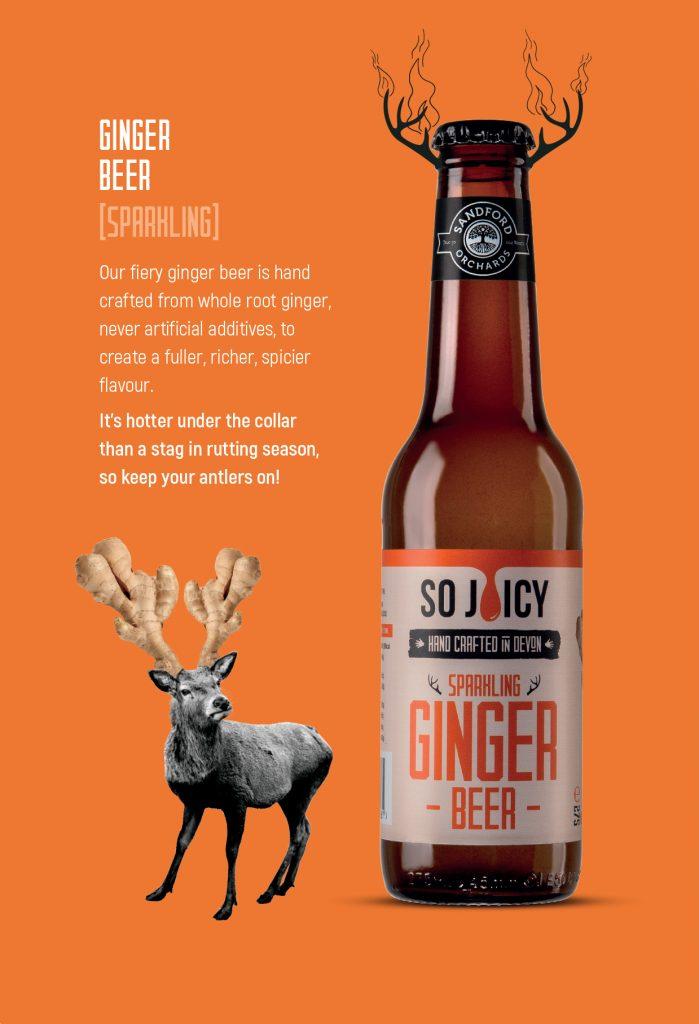 Ginger Beer Packaging Design